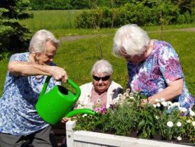 Červen 2021 – Aktivity na zahradě